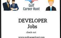 Software Developer