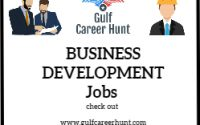 Business Development Manager and Sales Engineer