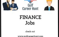 CA qualified Finance Executives